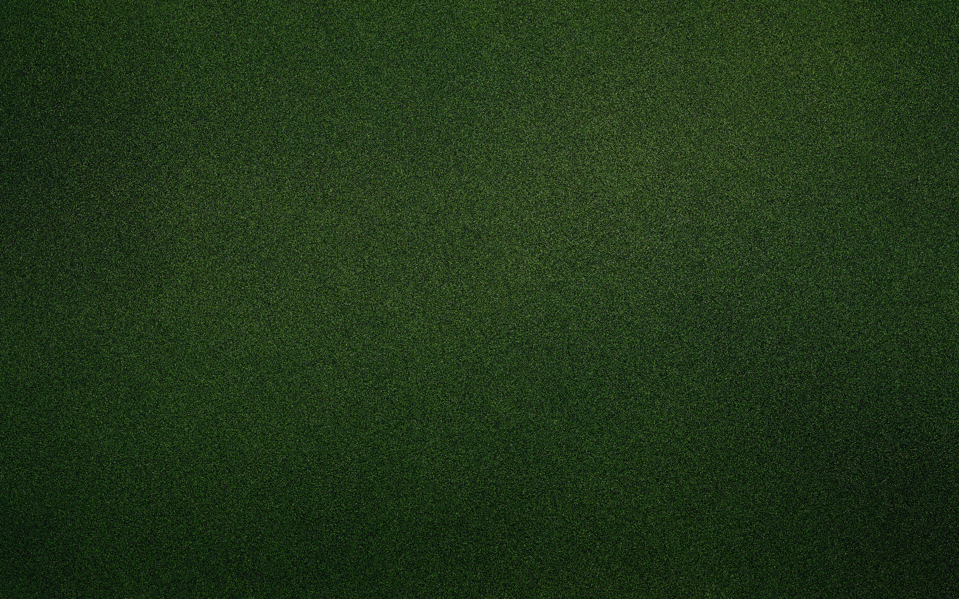 Dark green wallpaper 5 Green Giant Design Build